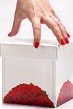 λευκό χεριών κιβωτίων στοκ φωτογραφία με δικαίωμα ελεύθερης χρήσης