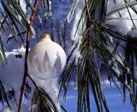 λευκό Χριστουγέννων στοκ φωτογραφίες
