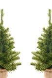 λευκό χριστουγεννιάτικ στοκ φωτογραφία με δικαίωμα ελεύθερης χρήσης