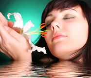 λευκό ύδατος κρίνων λου&l Στοκ εικόνα με δικαίωμα ελεύθερης χρήσης