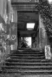 λευκό 2 μαύρο καταστροφών Στοκ Εικόνα