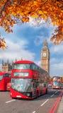 Λεωφορεία με τα φύλλα φθινοπώρου ενάντια σε Big Ben στο Λονδίνο, Αγγλία, UK Στοκ εικόνες με δικαίωμα ελεύθερης χρήσης