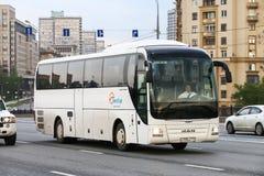 Λεωφορείο λιονταριών ` s ΑΤΟΜΩΝ R07 στοκ εικόνες