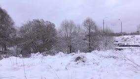 Λεωφορείο που κινείται στη χειμερινή γέφυρα στον όμορφο χιονώδη δασικό 4K παν πυροβολισμό φιλμ μικρού μήκους