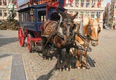 λεωφορείο της Αμβέρσας Στοκ φωτογραφία με δικαίωμα ελεύθερης χρήσης