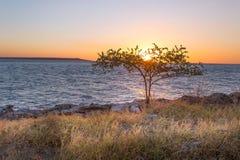 Λεωφόρος στο ηλιοβασίλεμα Στοκ Εικόνες