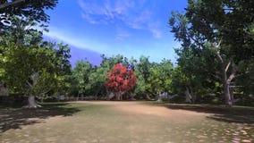 Λεωφόρος των δέντρων με τη μετακίνηση καμερών απεικόνιση αποθεμάτων