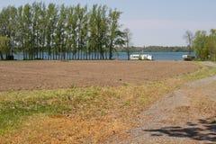 Λεύκες που ευθυγραμμίζουν τη λίμνη, μακροχρόνιο σημείο, κομητεία του Edward πριγκήπων, Οντάριο Στοκ εικόνες με δικαίωμα ελεύθερης χρήσης