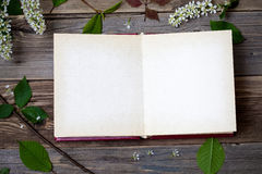 Λεύκωμα με τις ανοικτά σελίδες και το πουλί-κεράσι ανθών Στοκ Εικόνες