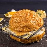 Ληγμένο γρήγορο φαγητό Κουλούρι για Burger και το χαλασμένο τυρί Επιβλαβής DA Στοκ Εικόνα