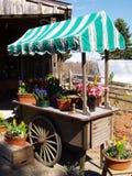 λιανική πώληση κήπων κάρρων Στοκ εικόνες με δικαίωμα ελεύθερης χρήσης