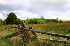 λιβάδια ειρηνικά Στοκ εικόνα με δικαίωμα ελεύθερης χρήσης