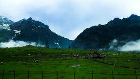 Λιβάδια του sonamarg στοκ φωτογραφία