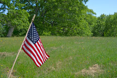 λιβάδι αμερικανικών σημαιών μικρό Στοκ φωτογραφία με δικαίωμα ελεύθερης χρήσης