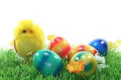 λιβάδι αυγών Πάσχας νεοσ&sig Στοκ φωτογραφία με δικαίωμα ελεύθερης χρήσης