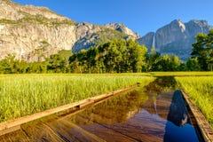 Λιβάδι με τις πλημμυρισμένες πτώσεις θαλασσίων περίπατων και Yosemite Στοκ Εικόνες