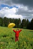λιβάδι πικραλίδων Στοκ εικόνες με δικαίωμα ελεύθερης χρήσης