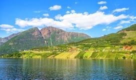 Λιβάδια και χωριό σε Hardanger Fiord Στοκ Εικόνα