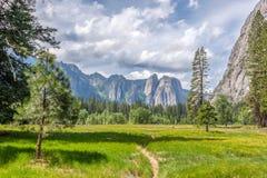 Λιβάδια στην κοιλάδα Yosemite Στοκ Εικόνα