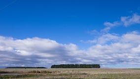 Λιβάδια στην Τασμανία, Αυστραλία Στοκ φωτογραφία με δικαίωμα ελεύθερης χρήσης