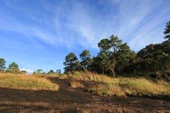 Λιβάδια στους λόφους ασβεστόλιθων στο γιο Thung μη Στοκ Εικόνες