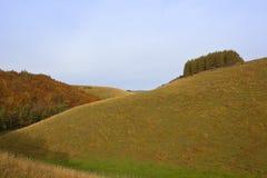 Λιβάδια φθινοπώρου Στοκ φωτογραφία με δικαίωμα ελεύθερης χρήσης