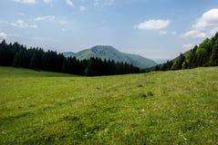 Λιβάδι βουνών με το δάσος γύρω, λόφοι στο υπόβαθρο και μπλε ουρανός με λίγα σύννεφα Carpathians Στοκ Εικόνα