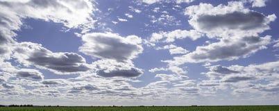Λιβάδι και ουρανός Στοκ φωτογραφία με δικαίωμα ελεύθερης χρήσης