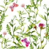 Λιβάδι με τα χορτάρια, τα λουλούδια και τις πεταλούδες Άνευ ραφής εκλεκτής ποιότητας σχέδιο watercolor Στοκ φωτογραφία με δικαίωμα ελεύθερης χρήσης