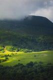 Λιβάδι με τα sheeps στη χλόη, Auvergne το τοπίο και Puy de Dome Στοκ Φωτογραφίες