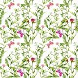 Λιβάδι με τις πεταλούδες, τα χορτάρια και τα λουλούδια Άνευ ραφής floral σχέδιο watercolor Στοκ Εικόνες