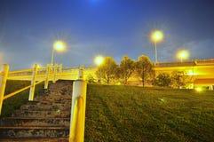 Λιβάδι με το ανερχόμενος κλιμακοστάσιο και τα δέντρα τή νύχτα Στοκ Φωτογραφίες