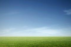 Λιβάδι με το μπλε ουρανό Στοκ Εικόνα