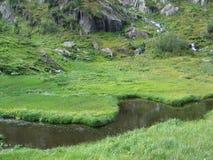Λιβάδι νερού Στοκ εικόνες με δικαίωμα ελεύθερης χρήσης