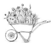 Λιβάδι λουλουδιών wheelbarrow διανυσματική απεικόνιση