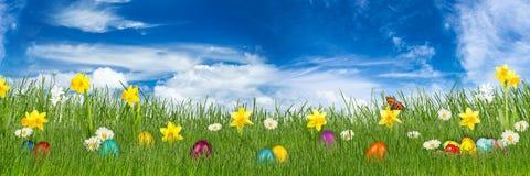Λιβάδι Πάσχας με τα ζωηρόχρωμα αυγά Πάσχας Στοκ εικόνες με δικαίωμα ελεύθερης χρήσης