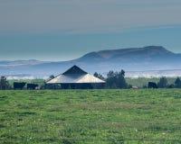 Λιβάδι, σιταποθήκη και βοοειδή στοκ φωτογραφίες