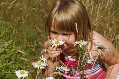 λιβάδι της Annie ε Στοκ εικόνες με δικαίωμα ελεύθερης χρήσης