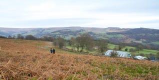 Λιβάδι του Derbyshire με τους λόφους και το μεγάλο ουρανό Στοκ Εικόνες
