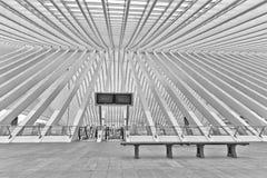 ΛΙΕΓΗ, ΒΕΛΓΙΟ - το Δεκέμβριο του 2014: Αφηρημένη άποψη σχετικά με τη στέγη Στοκ εικόνα με δικαίωμα ελεύθερης χρήσης