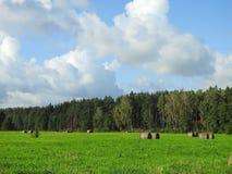 Λιθουανικό τοπίο φθινοπώρου Στοκ Εικόνες