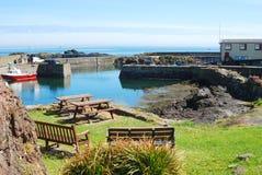Λιμάνι, βάρκα, καθίσματα και ναυαγοσωστική λέμβος που ρίχνονται στο ST Abbs στοκ φωτογραφίες