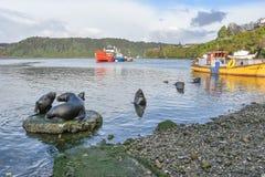 Λιμάνι κοντά στην αγορά ψαριών Angelmo σε Puerto Montt, Χιλή Στοκ φωτογραφία με δικαίωμα ελεύθερης χρήσης
