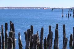 Λιμάνι του Πόρτλαντ Στοκ Εικόνα