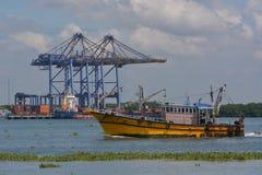 Λιμάνι Kochi με τον κρίνο νερού στοκ φωτογραφίες με δικαίωμα ελεύθερης χρήσης