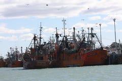 Λιμάνι Rawson Στοκ Εικόνες