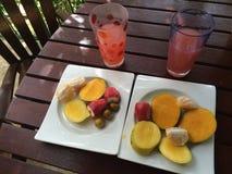 Λιμένας - - φρούτα της Ισπανίας, Τρινιδάδ με το χυμό Στοκ Εικόνες