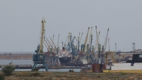 Λιμενικοί γερανοί για το φορτηγό πλοίο φόρτωσης απόθεμα βίντεο