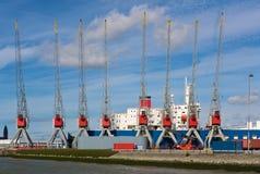 Λιμενικοί γερανοί Στοκ εικόνες με δικαίωμα ελεύθερης χρήσης