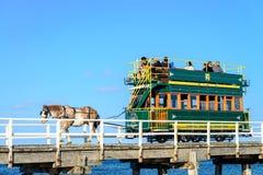 Λιμενικό συρμένο άλογο τραμ του Victor Στοκ εικόνες με δικαίωμα ελεύθερης χρήσης